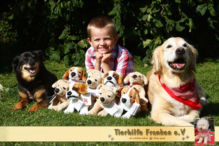 Bausteinhunde-der-Tierhilfe-Franken