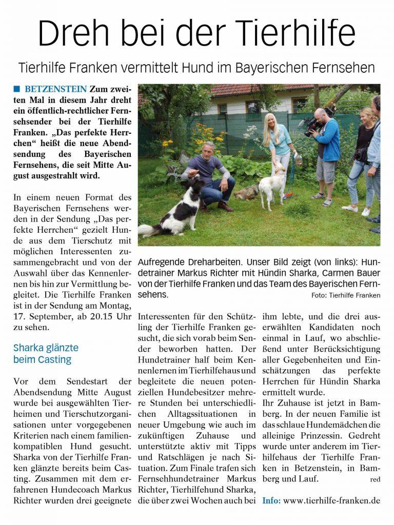 """Dreh bei der Tierhilfe Tierhilfe Franken vermittelt Hund im Bayerischen Fernsehen BETZENSTEIN Zum zweiten Mal in diesem Jahr dreht ein öffentlich-rechtlicher Fernsehsender bei der Tierhilfe Franken. """"Das perfekte Herr-chen"""" heißt die neue Abendsendung des Bayerischen Fernsehens, die seit Mitte August ausgestrahlt wird. Inq einem neuen Format des Bayerischen Fernsehens werden in der Sendung """"Das perfekte Herrchen"""" gezielt Hun-de aus dem Tierschutz mit möglichen Interessenten zu-sammengebracht und von der Auswahl über das Kennenler-nen bis hin zur Vermittlung be-gleitet. Die Tierhilfe Franken ist in der Sendung am Montag, 17. September, ab 20.15 Uhr zu sehen. Sharka glänzte beim Casting Vor dem Sendestart der Abendsendung Mitte August wurde bei ausgewählten Tier-heimen und Tierschutzorgani-sationen unter vorgegebenen Kriterien nach einem familien-kompatiblen Hund gesucht. Sharka von der Tierhilfe Fran-ken glänzte bereits beim Cas-ting. Zusammen mit dem er-fahrenen Hundecoach Markus Richter wurden drei geeignete Interessenten für den Schütz-ling der Tierhilfe Franken ge-sucht, die sich vorab beim Sen-der beworben hatten. Der Hundetrainer half beim Ken-nenlernen im Tierhilfehaus und begleitete die neuen poten-ziellen Hundebesitzer mehre-re Stunden bei unterschiedli-chen Alltagssituationen in neuer Umgebung wie auch im zukünftigen Zuhause und unterstützte aktiv mit Tipps und Ratschlägen je nach Si-tuation. Zum Finale trafen sich Fernsehhundetrainer Markus Richter, Tierhilfehund Sharka, die über zwei Wochen auch bei ihm lebte, und die drei aus-erwählten Kandidaten noch einmal in Lauf, wo abschlie-ßend unter Berücksichtigung aller Gegebenheiten und Ein-schätzungen das perfekte Herrchen für Hündin Sharka ermittelt wurde. Ihr Zuhause ist jetzt in Bam-berg. In der neuen Familie ist das schlaue Hundemädchen die alleinige Prinzessin. Gedreht wurde unter anderem im Tier-hilfehaus der Tierhilfe Fran-ken in Betzenstein, in Bam-berg und Lauf. red Info: www.tierhilfe-franken.de Aufr"""